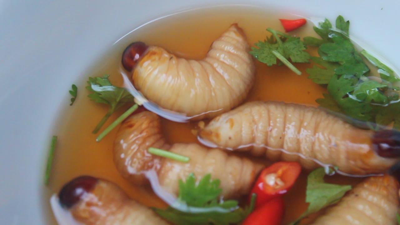 strange food around the world